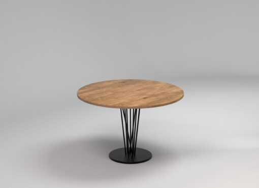 BASIC ELVA round table