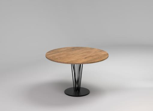 BASIC ELVA round table