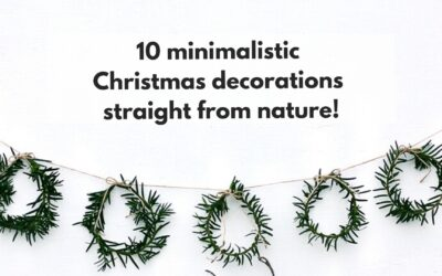 10 minimalistic Christmas decorations straight from nature!
